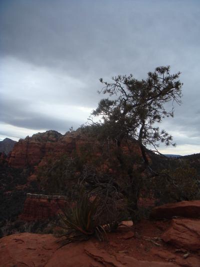 Arizona_077