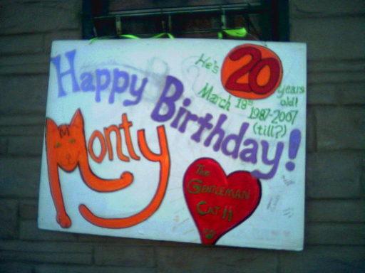 Cat_birthday_2