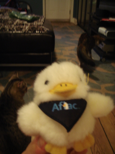 20070509_aflac_2
