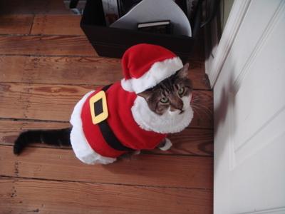 20071225_christmas_027_2
